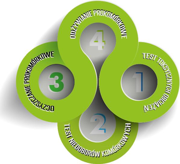 4 kroki do zdrowia komórkowego!